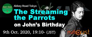 1009_StreamingTheParrots